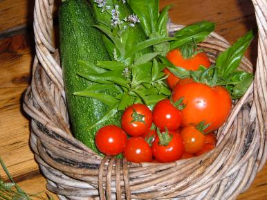 Tomatoes, Courgettes and Lemon Verbena
